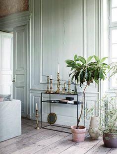 Decorating with houseplants.
