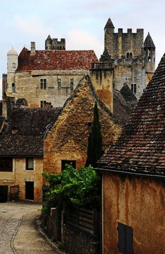 wanderthewood:    Beynac-et-Cazenac Dordogne France by Fred Perrier