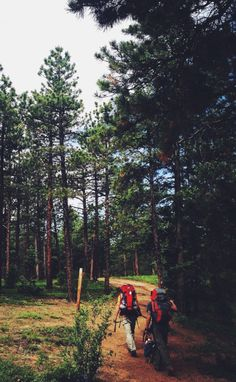 countryff4171:  Beginning of the Colorado Trail