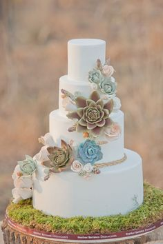 Succulent Wedding Cake - This will be my wedding cake. And I have officially decided that Succulents will be the main theme of my garden themed wedding!