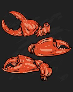 80% Off Sale Crab claws isolated on white background. Hand drawn crab vector. crab claws with clipping path. seafood sketch. (EPS, JPG)
