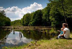 Hubertlaki-tó, avagy a bakonyi Gyilkos-tó... Picture Creator, Hungary, Budapest, Explore, Mountains, Places, Nature, Pictures, Travel