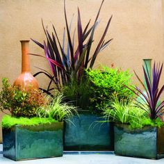 Fall color:  For a modern look, plant your arrangements in glazed pots of deep burgundy, forest green, or pebble gray. Youll create a fresh autumnal mood without having to rake a single leaf.