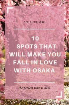 Boisterous city of Osaka beats to its own unique rhythms. Osaka's distinctive personality is immediately apparent the moment a visitor arrives in the city. #osaka #japan #osakajapan #osakadestinations