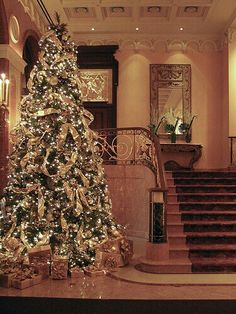 Plaza Hotel in NYC..love this Christmas tree!