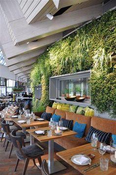 Chantier d'un mur vegetal dans un restaurant de SUSHI