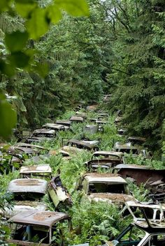Cemitério de carros, Ardennes, Bélgica