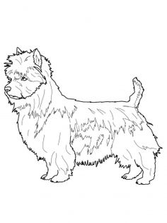 217 Best dogs to color images