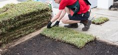 Try laying some brand-spanking new turf! How To Lay Turf, Diy Home Cleaning, Top Soil, Environmental Health, Brick Patterns, Gardening Gloves, Health And Safety, Clean House
