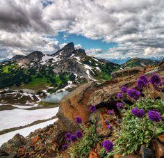 paisajes-naturales---013.jpg (666×641)