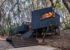 Forest <> House | envelope A+D | Archinect