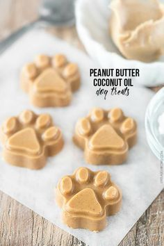 your dogs to these yummTreat your dogs to these yummy homemade Peanut Butter Coconut Oil Dog Treats! They'll be begging for more. Puppy Treats, Diy Dog Treats, Dog Treat Recipes, Healthy Dog Treats, Dog Food Recipes, Homeade Dog Treats, Healthy Pets, Coconut Oil For Dogs, Coconut Peanut Butter
