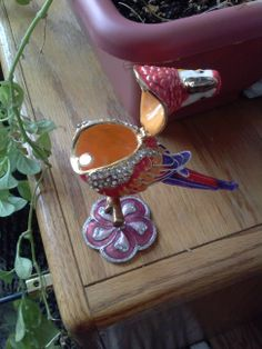 View of opened Bejeweled Parrot Trinket Box