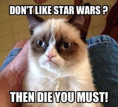 Grumpy Cat Star Wars Fan!