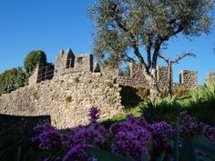 Penela Castle Garden