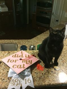 Decorated graduation cap! #cats #graduation #college