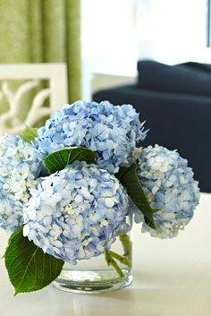 blue hydrangeas for the dining table