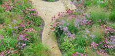 prairietuin LooDenkers in Tuinen | Ontwerpers van stijlvolle en tijdloze tuinen Stepping Stones, Outdoor Decor, Plants, Landscapes, Sycamore Trees, Paisajes, Stair Risers, Scenery, Plant