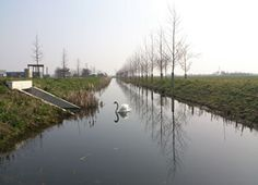 This watercourse is part of the landscape design by Vollmer & Partners for business park Haarbrug-Zuid in Bunschoten.