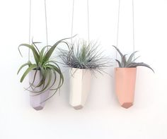 slip cast hanging crystal planter by Beanandbailey on Etsy