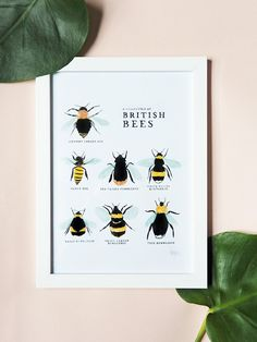 Inspired by my mother's love of bees, this print celebrates the cutest of our British insects: the Bee! Featuring 7 'social' bees, it covers all of the varietie Bee Identification, Annie Original, British Bees, Hand Drawn Type, Bee Theme, Nursery Prints, Bee Nursery, Mothers Love, Spring Time