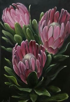 Protea Art, Protea Flower, Art Floral, Botanical Art, Botanical Illustration, Train Art, Fabric Painting, Painting Flowers, Flower Art