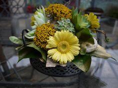 A floral design using succulents. Floral Design, Succulents, Flowers, Plants, Floral Patterns, Succulent Plants, Floral, Plant, Royal Icing Flowers