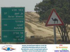 """Placas nas estradas de Israel com uma curiosa mensagem de """"cuidado, camelos"""""""