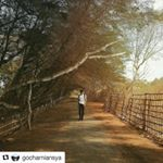 56 Likes, 1 Comments - Sewa Mobil Jogja Goa, Country Roads, Tours, Instagram