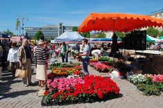Lahti - Market is arranged every first Wednesday of the month. Finland Travel, Chasing Dreams, Nordic Design, Helsinki, My Dream, Wednesday, Outdoors, Patio, Country