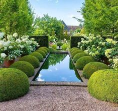 In this article we will discuss how to design a strictly formal garden on a large, rectangular area. Designing formal garden needs a little . Boxwood Garden, Topiary Garden, Garden Pool, Water Garden, Garden Landscaping, Boxwood Topiary, Box Garden, Garden Cottage, Topiaries