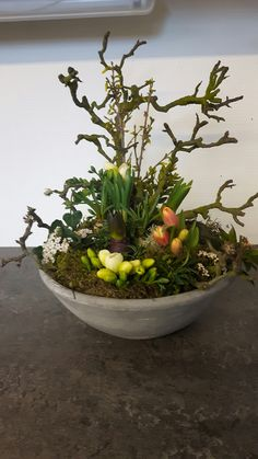 If you were looking for moss garden, take a look below Easter Flower Arrangements, Easter Flowers, Christmas Flowers, Spring Flowers, Floral Arrangements, Deco Floral, Arte Floral, Spring Decoration, Diy Decoration