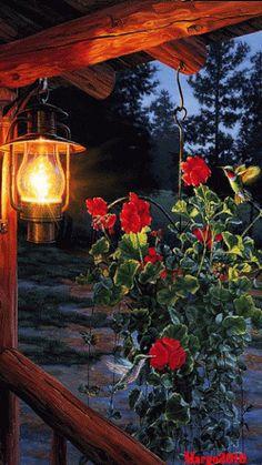 Discover the coolest Gece lambası GIFs Beautiful Photos Of Nature, Beautiful Fantasy Art, Beautiful Gif, Beautiful Flowers, Foto Gif, Gif Photo, Good Night Gif, Good Night Image, Beau Gif