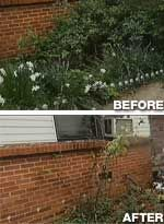 Woman's Survival Garden Seized and Destroyed by Authorities. This is appalling! This makes my blood boil! (pic: before after code enforcment team) Instead of motivating other people to be self-sufficient, they trash this woman for not asking for a handout! GRRRRRRRRRRR!