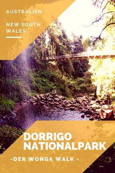 Der Dorrigo Nationalpark liegt an der Ostküste Australiens. Genauer gesagt in New South Wales bei Coffs Harbour. Dschungel-Feeling pur, traumhafte Wasserfälle und die australische Tierwelt hautnah! Viel Spaß beim Lesen & Entdecken!