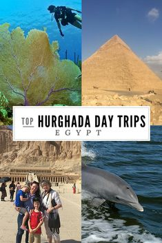 If you are looking for the best Hurghada excurions worth the money, read this guide. We cover the best day trips from Hurghada and local Red Sea activities. Egypt Travel, Africa Travel, Travel Advice, Travel Guides, Travel Tips, Africa Destinations, Travel Destinations, Holiday Destinations, Travel With Kids