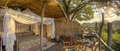The JackalBerry Treehouse, Africa. Now 'that's' what we should have had as kids!!