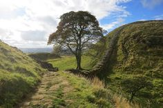 Explore.Walk.Snap.: Best Hadrians Wall Walk & Best View: Steel Rigg to Housesteads, including Sycamore Gap
