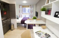 Studio Apartment Murphy Bed project - hideaway kitchen in edinburgh apart-hotel. | hotels