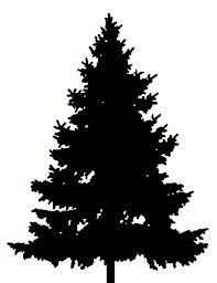 pine tree silhouette clip art cliparts accent wall mural rh pinterest com Primitive Pine Tree Clip Art pine tree silhouette clip art free