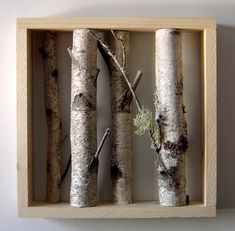 Organic Wall Art - white birch forest by urban +forest, via Flickr