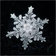 「雪の結晶」の画像検索結果