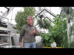 ▶ Aquaponics and greenhouse kit for income, family - He sells his 500-square-foot aquaponics greenhouse for $25,000 (via Turnkey Aquaponics), but this is an income-producing garden.