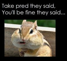 #Prednisone #lupus humor #lupus medications www.mollysfund.org