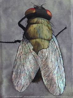 """yes, this is a quilt: """"Fly On The Wall"""" by Neroli Henderson : """"I painted the body with Lumiere and Dye-na-flow paints and then made his wings out of Angelina Fibers."""" seen at Art Quilts Around The World"""