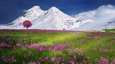 Snow Mountains Landscape [1920x1080]