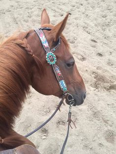 Bling Horse Tack, Headstall, Horses, Country, Projects, Room, Animals, Fotografia, Log Projects