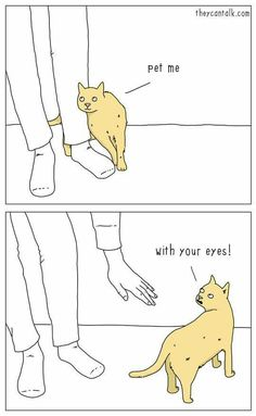 Just to make a little fun of cats' ways #TheyCanTalk