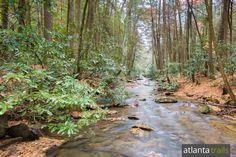Noontoola Creek flows beneath a rich forest canopy at Three Forks in North Georgia near Ellijay