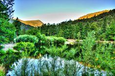 Cimarron Canyon NM  - © RandMphoto